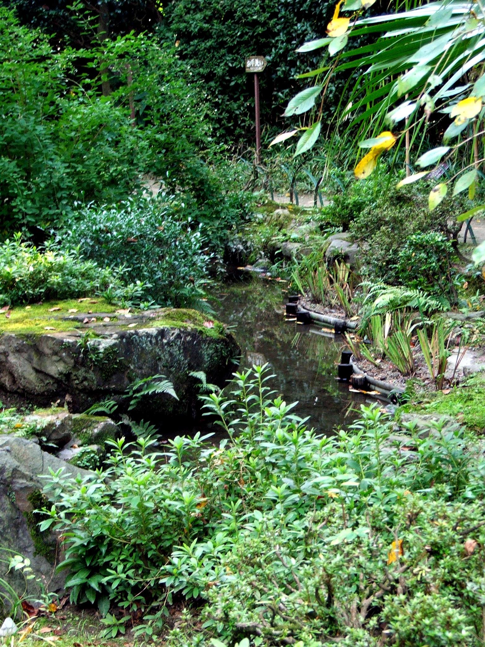 Il giardino giapponese e il giardino zen for Il giardino di zen
